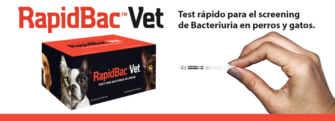 RapidBacVet test rápido para el screening de bateriuria en perros y gatos