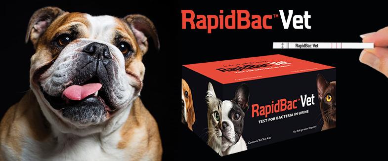 RapidBac Vet. Test rápido para el screening de Bacteriuria en perros y gatos