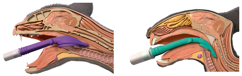 v-gel dispositivos supraglóticos para vías respiratorias